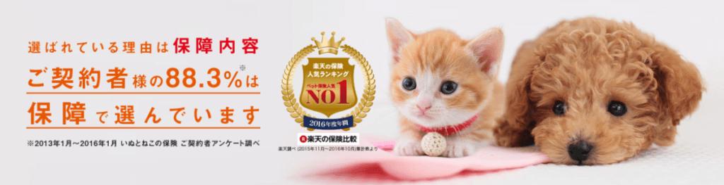 日本ペットプラス少額短期保険