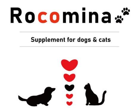 ロコミナの犬と猫