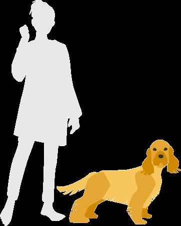 イングリッシュコッカースパニエルと人間の比較