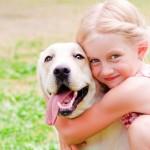 愛犬を最後まで看取る ペットロスは犬も悲しむ