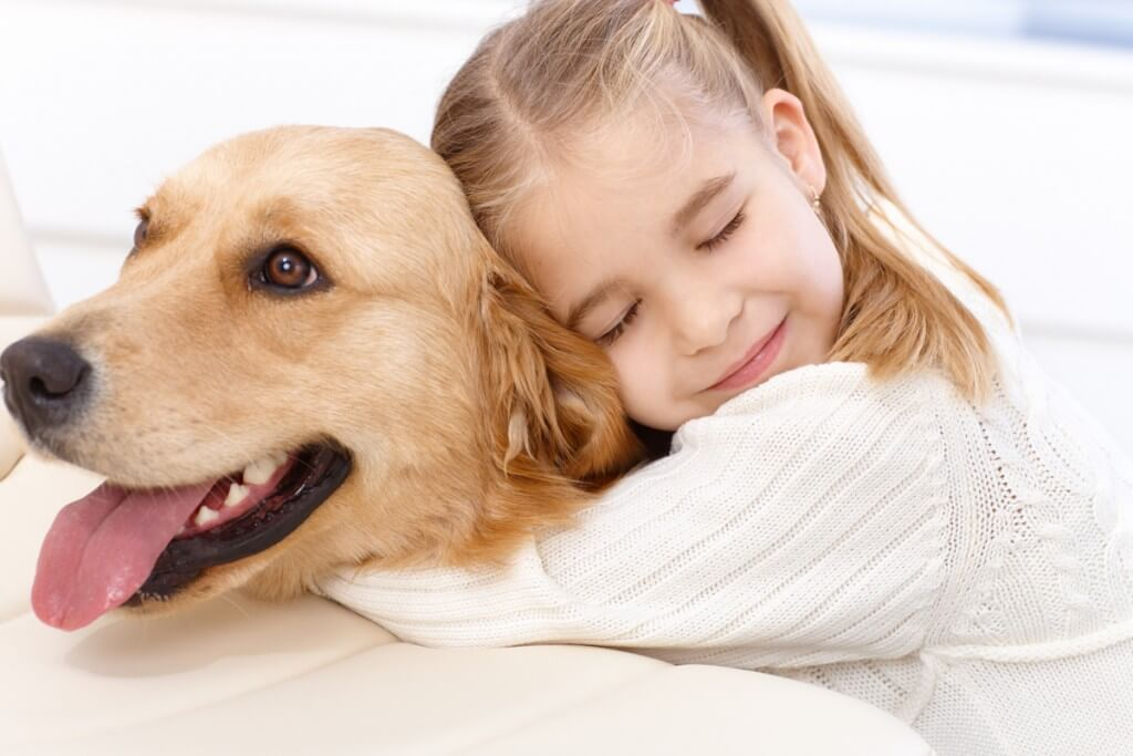 犬に関する記事一覧