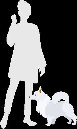 人と日本スピッツの比較図