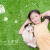 女の子と子犬とこいぬすてっぷ