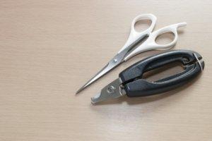 ハサミと爪切り