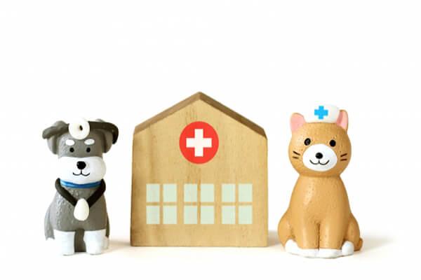 動物病院のイメージ