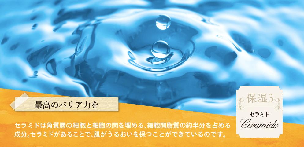 保湿成分のセラミド